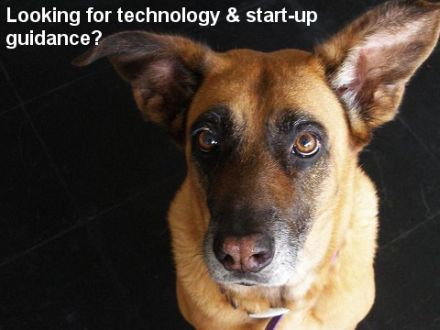 Looking for technology & start-up guidance?